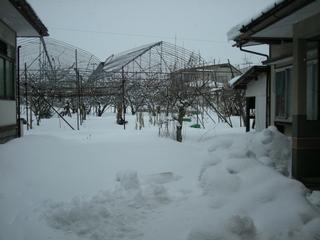 2014jan.sagae 006.jpg